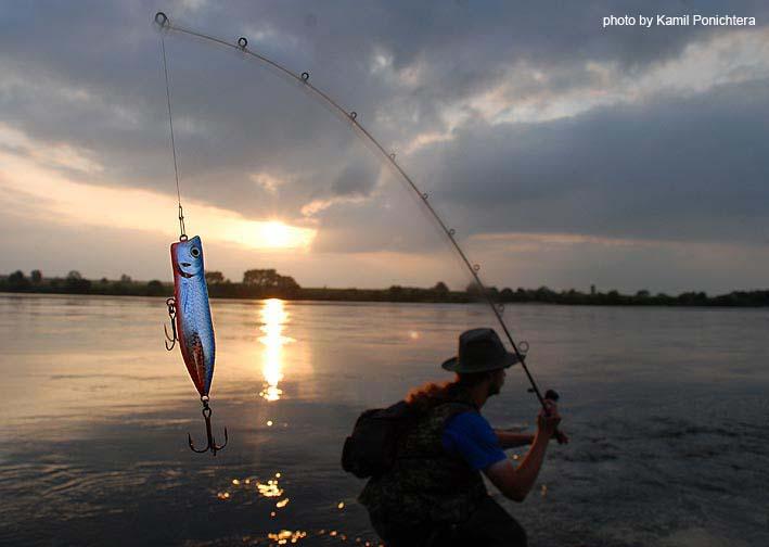 sic в рыбалке