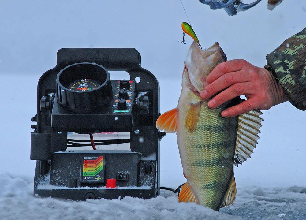 форум какой эхолот для рыбалки лучше